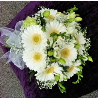 Gerbera, lisianthus, freesia and gypsophila with French ruscus.